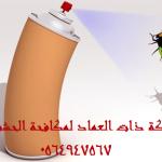 شركة رش الحشرات بالجبيل